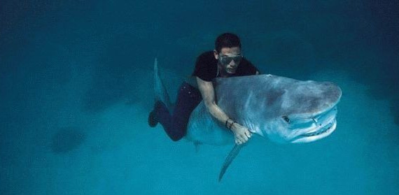 25waysToShowYoureAMan-17-guy-riding-shark